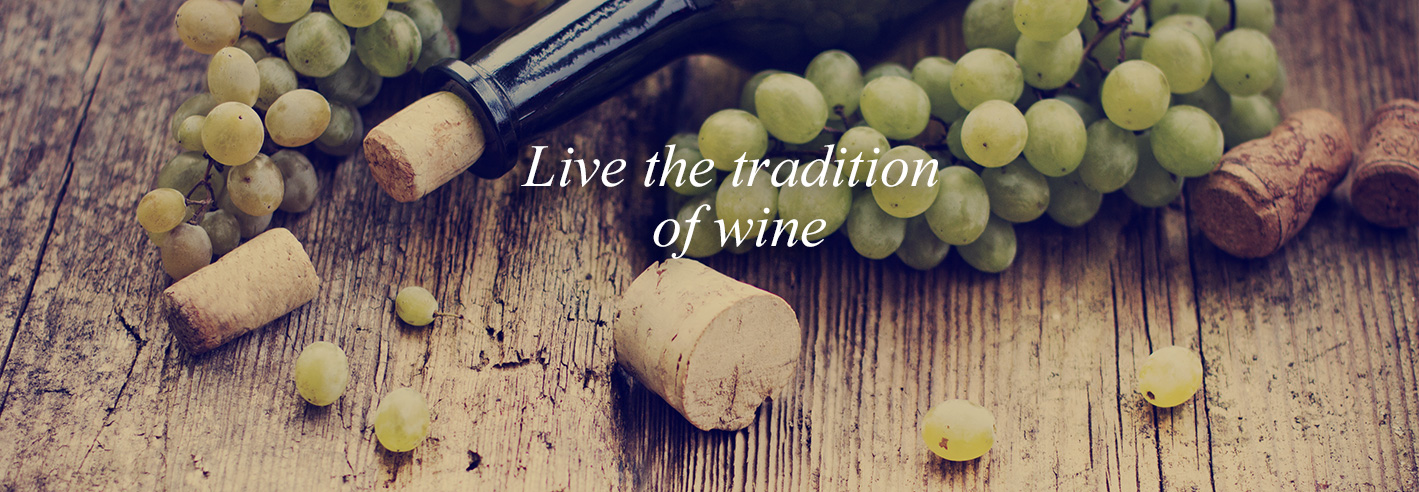 3511714BANNER-tradition-wine